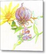 Arnica Garlic Thyme And Comfrey Metal Print