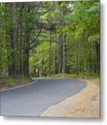 Around The Bend Metal Print