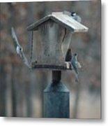 Around The Birdhouse Metal Print