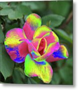 Array Of Color Metal Print