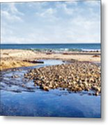 Arroyo Sequit Creek - Steelhead Trout Metal Print