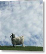 Art Goat Metal Print