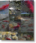 Art Of Kokanee Metal Print
