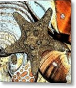 Art Shell 1 Metal Print