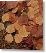 Artfully Scattered Sea Grape Leaves Metal Print