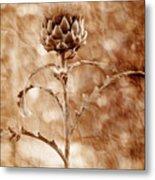 Artichoke Bloom Metal Print