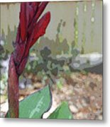 Artistic Red Canna Lily Metal Print