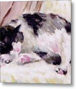 Artist's Cat Sleeping Metal Print