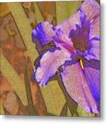 Artsy Iris Metal Print