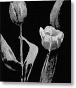 Artsy Tulips Metal Print