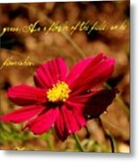 As A Flower Of The Fields Metal Print