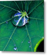 As Tear... Metal Print