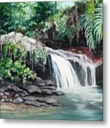 Asa Wright Falls      Sold Metal Print
