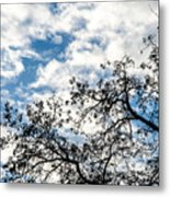 Ascending To Infinity Metal Print