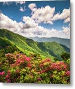 Asheville Nc Blue Ridge Parkway Spring Flowers Scenic Landscape Metal Print