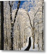 Asheville Nc - Winter Stroll Metal Print