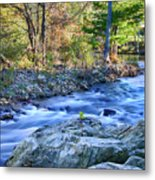 Asheville Stream Metal Print