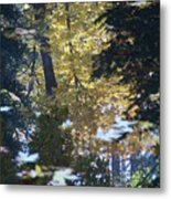 Ashland Reflections Metal Print