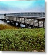 Ashley River Sc Metal Print