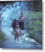 Asian Boy Playing Water With Dad And Buffalo Metal Print