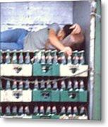 Asleep On The Job Metal Print