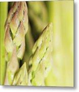 Asparagus Spears Macro Metal Print
