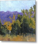 Aspen Color Metal Print