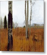 Aspen Forest Shear II Metal Print