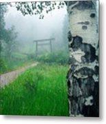 Aspen Gate Mist Metal Print