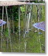 Aspen Reflections Metal Print