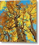 Aspen Sky High 2 Metal Print