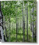 Aspen Trees Colorado Metal Print