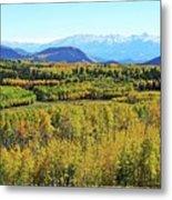 Aspen Valley Metal Print