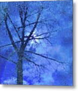 Asphalt-tree Abstract Refection 02 Metal Print