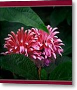 At Center Metal Print