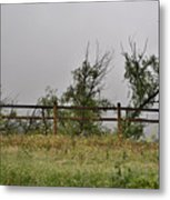 At Peters Canyon In The Rain 1 Metal Print