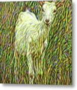 At Play In The Wild Meadow Metal Print