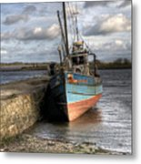 At Rest Metal Print by Marion Galt