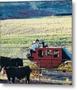At The Cody Rodeo Metal Print by Jan Amiss Photography