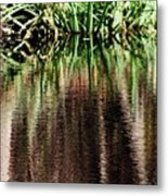 At The Edge Of The Pond Metal Print