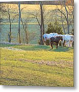 At The End Of The Day Metal Print by Jan Amiss Photography