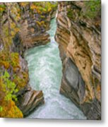 Athabasca River Canyon Metal Print