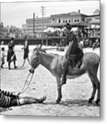 Atlantic City: Donkey Metal Print