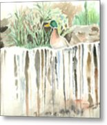 Atop The Waterfall Metal Print