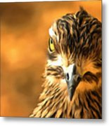 Attitude...with Feathers Metal Print