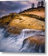 Attracted To The Ocean Metal Print