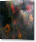 Attraction. Metal Print