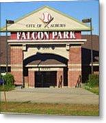 Auburn, Ny - Falcon Park Metal Print