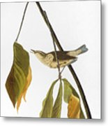 Audubon: Thrush, 1827 Metal Print