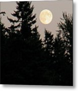August Full Moon - 1 Metal Print